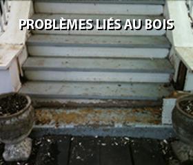 problemes-lies-au-bois