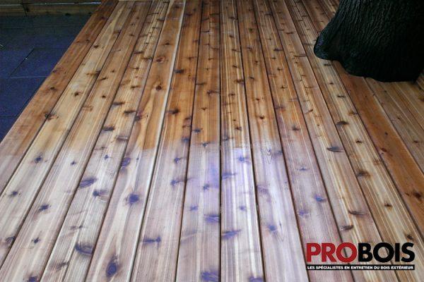 probois cloture en bois wooden fence 018