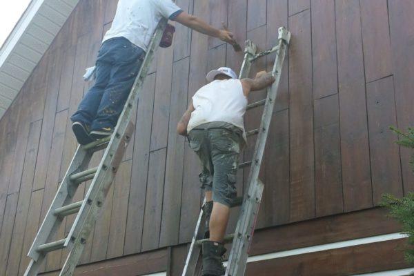 probois entretien bois rond maison 35
