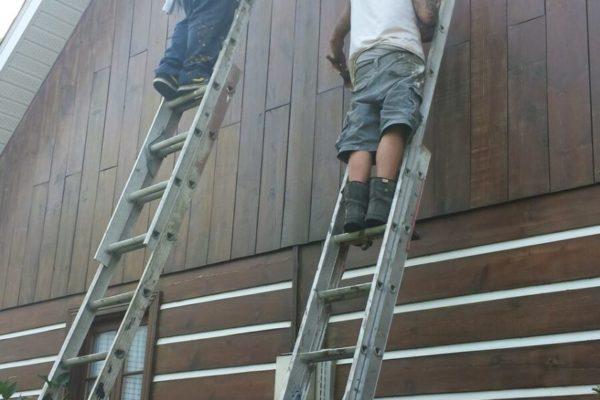 probois entretien bois rond maison 41
